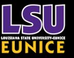 Louisiana State University at Eunice  Wordup Yout